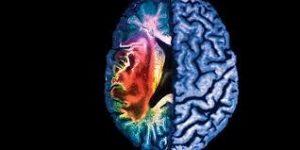 Miami Car Accident Lawyer - Traumatic Brain Injuries
