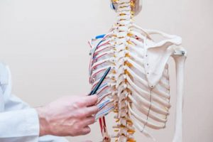 Understanding Spinal Cord Injuries - Miami Personal Injury Lawyer